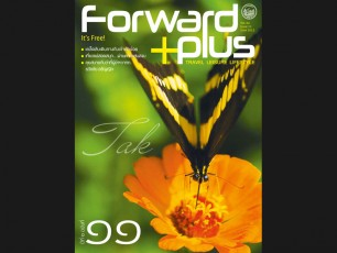 Forward Plus Issue 11 June