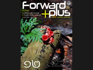 Forward Plus Issue 12 July